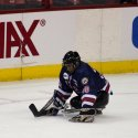 capitals-sled-hockey-01