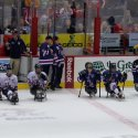 capitals-sled-hockey-02