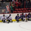capitals-sled-hockey-21