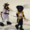 mascot_hockey-16