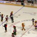 mascot_hockey-17